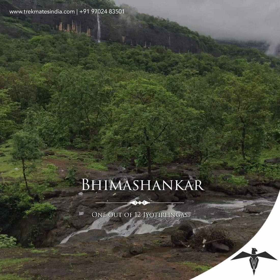 TMI Two day Trek to Mystic Bhimashankar On 18th-19th July2020.