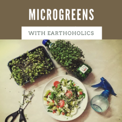 Online Microgreens workshop