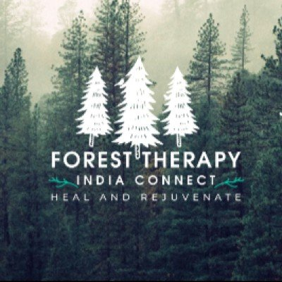 Forest Bathing- Immerse yourself in nature