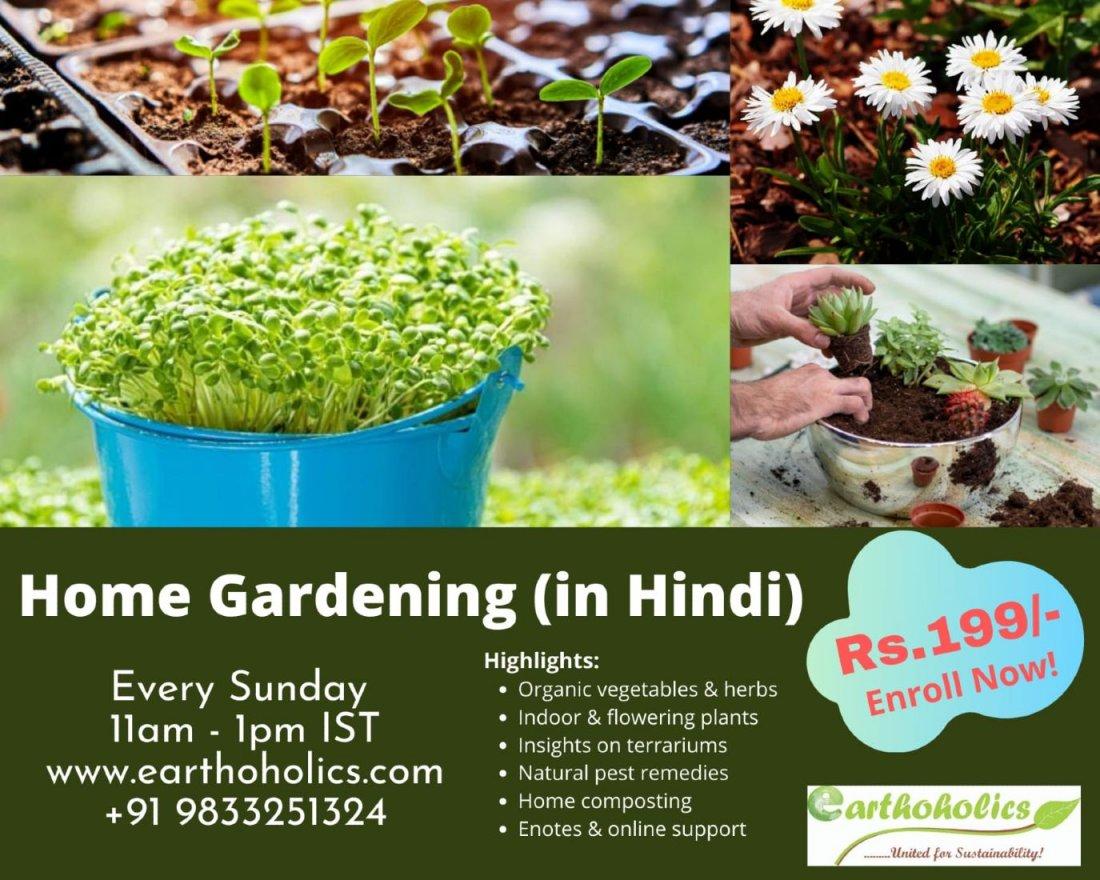 Online Home Gardening Workshop (In Hindi) | Online Event | AllEvents.in