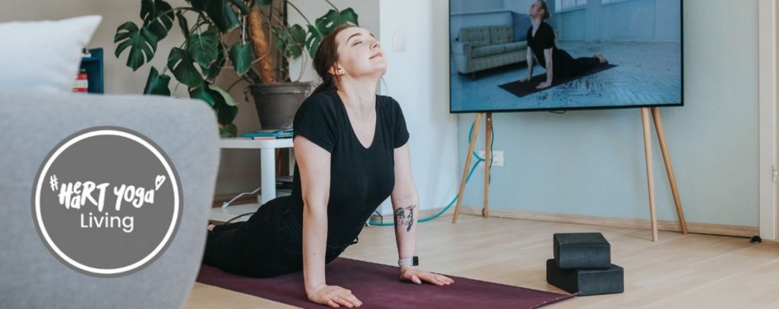 Free Trial - Online Beginners Yoga Class, 25 November | Online Event | AllEvents.in