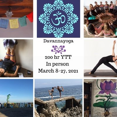 Yoga Teacher Training 200 hr. - In Person - Vinyasa & Restorative Yoga