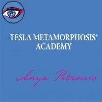 Tesla Metamorphosis Academy