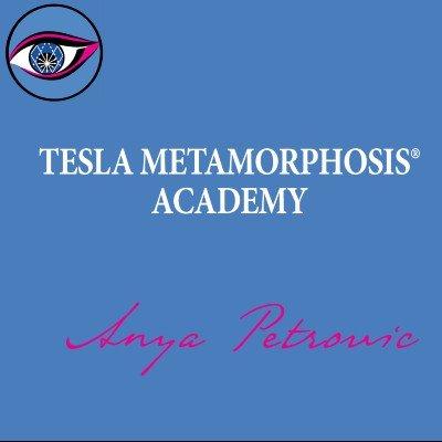 TESLA HEALING METAMORPHOSIS SEMINAR