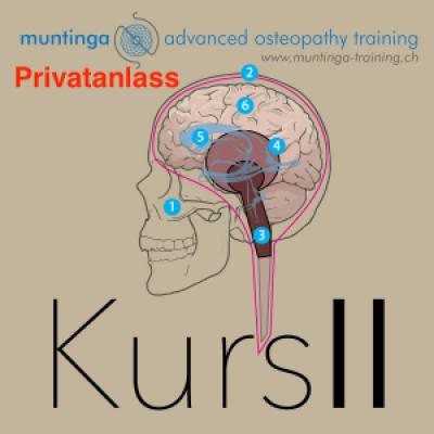 Privat Workshop II Zentrales Nervensystem