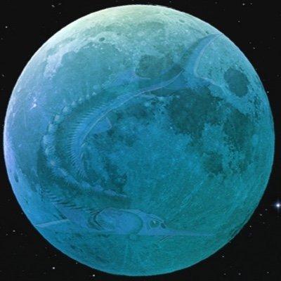 Sturgeon Moon Paddle