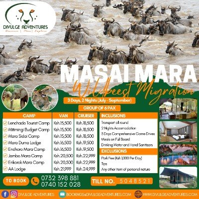 Masai Mara Wildebeests Migration