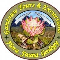 Gantouw Tours & Excursions