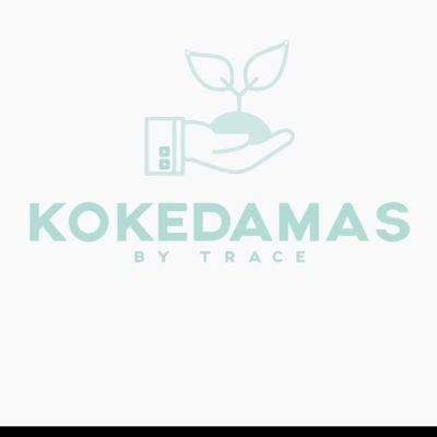 Kokedama Workshop 2