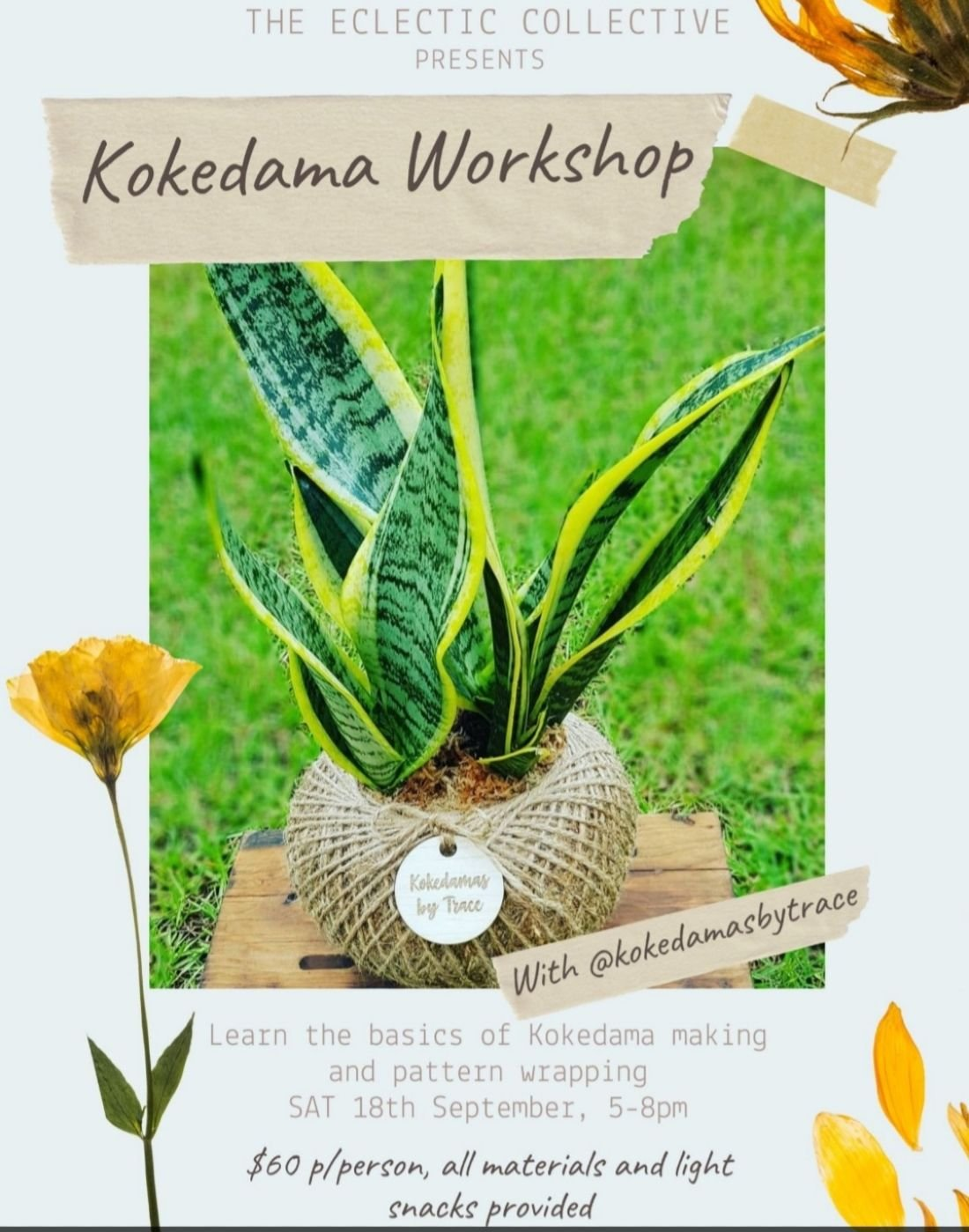 Kokedama Workshop 2 | Event in Red Hill | AllEvents.in