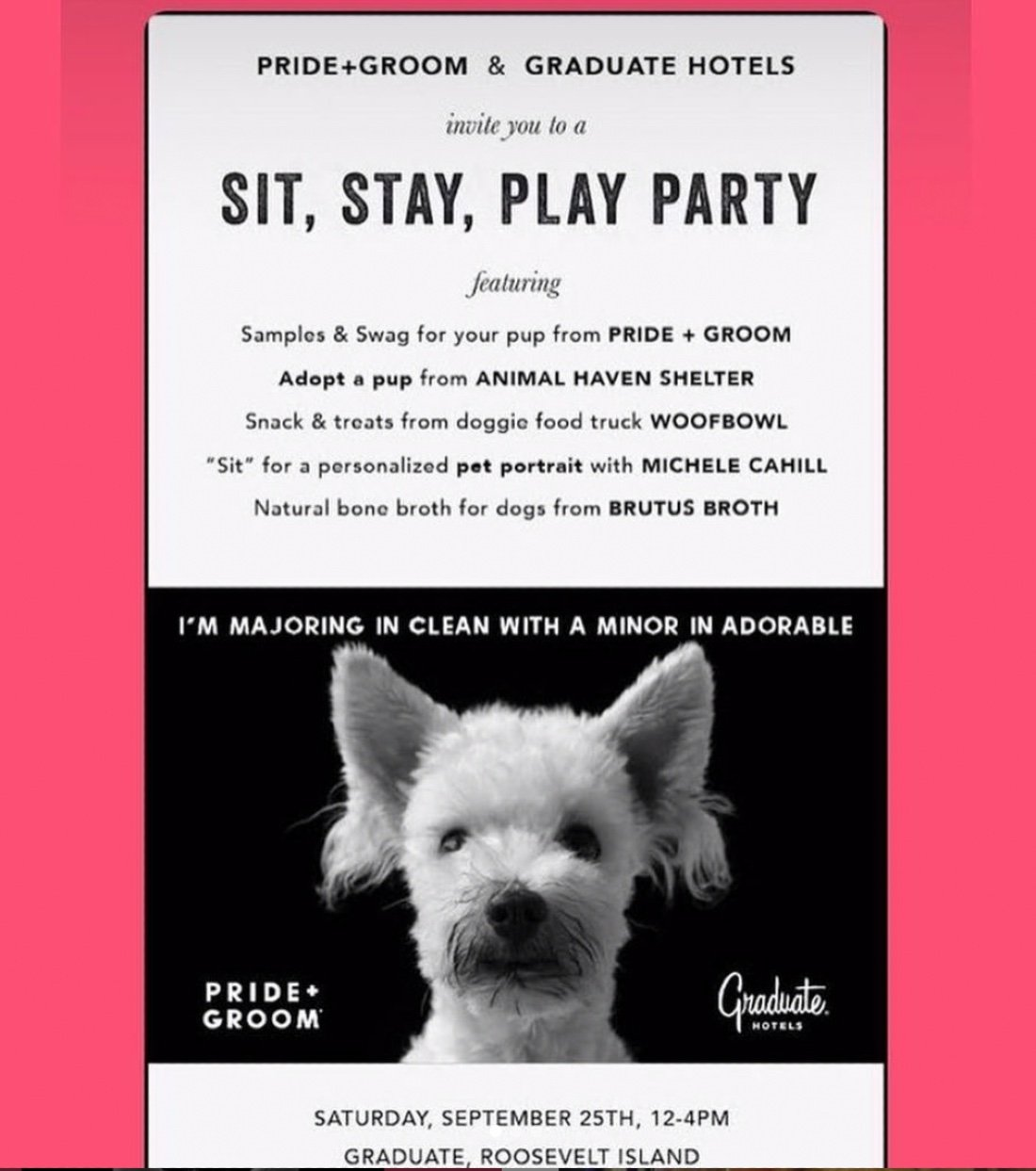 Sit Stay Play Pawty with your PUP, 25 September   Event in Long Island City   AllEvents.in
