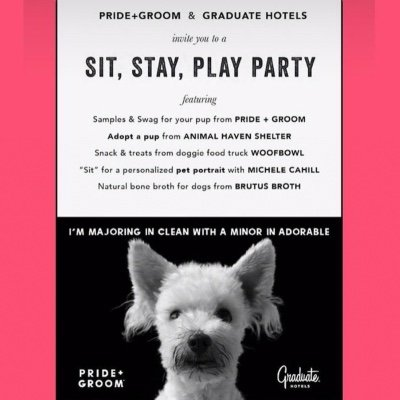 Sit Stay Play Pawty with your PUP