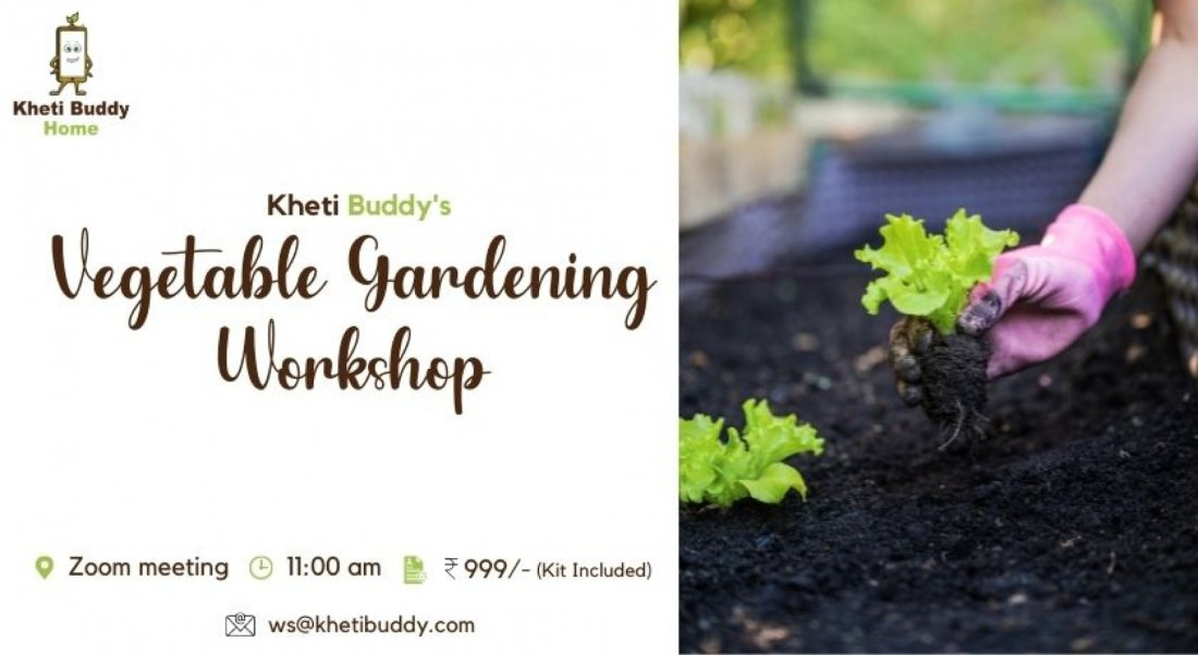 KhetiBuddy's Online Vegetable Gardening Workshop, 30 October | Online Event | AllEvents.in